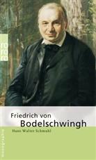 Hans-Walter Schmuhl - Friedrich von Bodelschwingh