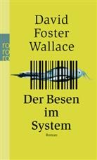 David F Wallace, David Foster Wallace - Der Besen im System
