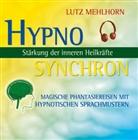 Lutz Mehlhorn, Traudel Haas-Saraas, Manuel Werner - Stärkung der inneren Heilkräfte, 1 Audio-CD (Hörbuch)