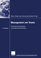 Gemünde, Hans G. Gemünden, Hans Georg Gemünden, Georg Gemünden, Hög, Marti Högl... - Management von Teams