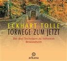 Eckhart Tolle, Eckhart Tolle - Torwege zum Jetzt, 1 Audio-CD (Hörbuch)
