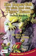 Thomas Brezina, Thomas C. Brezina, Werner Heymann - Ein Superfall für dich und das Tiger-Team - Bd. 10: Ein Superfall für dich und das Tiger-Team - Der Berg der 1000 Drachen
