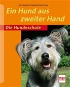 Griebe, Ann-Sophie Griebel, Krivy, Petr Krivy, Petra Krivy - Ein Hund aus zweiter Hand