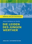 Johann Wolfgang Von Goethe, Rüdiger Bernhardt - Johann Wolfgang Goethe 'Die Leiden des jungen Werther'