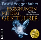 Pascal Voggenhuber, Pascal Voggenhuber - Begegnung mit dem Geistführer, 1 Audio-CD (Hörbuch)