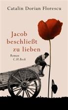 Catalin Dorian Florescu - Jacob beschließt zu lieben