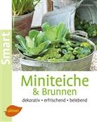 Andrea Christmann - Miniteiche und Brunnen