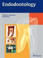 Michael A Baumann, Michael A. Baumann, Rudol Beer, Rudolf Beer, Syngcuk Kim, Herbert F Wolf... - Endodontology