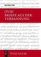 Ovid, Nikla Holzberg, Niklas Holzberg - Briefe aus der Verbannung