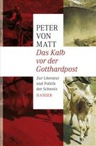 Peter von Matt - Das Kalb vor der Gotthardpost