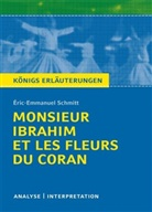 Eric-Emmanuel Schmitt, Éric-Emmanuel Schmitt - Éric-Emmanuel Schmitt 'Monsieur Ibrahim et les fleurs du Coran'