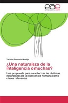 Yuriditzi Pascacio-Montijo - ¿Una naturaleza de la inteligencia o muchas?