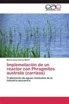 María Juana García Marín - Implemetación de un reactor con Phragmites australis (carrizos)