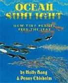 Molly Bang, Molly/ Chisholm Bang, Penny Chisholm - Ocean Sunlight