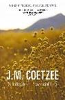J. M. Coetzee - Scenes from Provincial Life