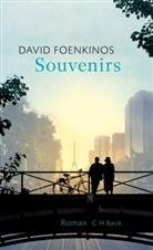 David Foenkinos - Souvenirs