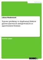 Lukasz Niedzwiecki - Typowe problemy w eksploatacji blokow gazowo-parowych zintegrowanych ze zgazowaniem biomasy