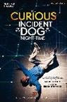 Mark Haddon, Simon Stephens, Simon (Author) Stephens, Simon (Playwright Stephens - The Curious Incident of the Dog in the Night-Time