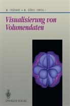 Marti Frühauf, Martin Frühauf, Göbel, Martin Göbel - Visualisierung von Volumendaten