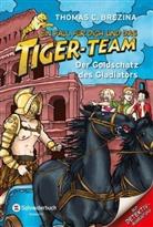 Thomas Brezina, Thomas C Brezina, Thomas C. Brezina, Naomi Fearn - Ein Fall für dich und das Tiger-Team - Der Goldschatz des Gladiators