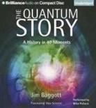 Jim Baggott, Mike Pollock, Mike Pollock - The Quantum Story: A History in 40 Moments (Audio book)