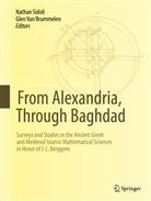 Glen van Brummelen, P. van Brummelen, Natha Sidoli, Nathan Sidoli, Van Brummelen, Glen Van Brummelen - From Alexandria, Through Baghdad