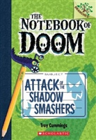 Troy Cummings, Troy Cummings - Attack of the Shadow Smashers