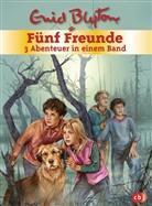 Enid Blyton - Fünf Freunde - 3 Abenteuer in einem BandF, ünf Freunde und das Teufelsmoor; Fünf Freunde und der Hexenring; Fünf Freunde im Gruselschloss