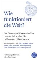Joh Brockman, John Brockman - Wie funktioniert die Welt?