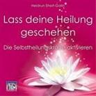 Heidrun Streit-Gallo, Heidrun Streit-Gallo - Lass deine Heilung geschehen (Hörbuch)