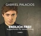 Gabriel Palacios, Gabriel Palacios - Endlich frei! (Hörbuch)