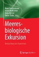 Peter Emschermann, Odwi Hoffrichter, Odwin Hoffrichter, Otto Hoffrichter, Helge Körner, Helge Körner u a... - Meeresbiologische Exkursion