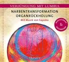 Lumira - Narbentransformation Organrückholung, 1 Audio-CD (Hörbuch)