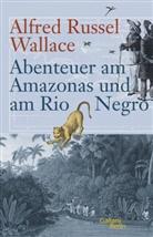 Wallace Alfred Russel, Matthia Glaubrecht, Matthias Glaubrecht - Abenteuer am Amazonas und am Rio Negro