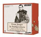 Ernst Jünger, Ernst Jünger, Tom Schilling - In Stahlgewittern, 10 Audio-CDs (Hörbuch)