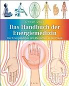 Cyndi Dale, Richard Wehrman - Das Handbuch der Energiemedizin