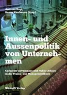 Andreas Hugi, Ronny Kaufmann, Andreas Hugi, Ronn Kaufmann, Ronny Kaufmann - Innen- und Aussenpolitik von Unternehmen