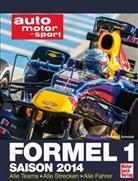 Michael Schmidt - Formel 1 Saison 2014