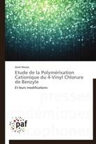 Amel Messai, Messai-a - Etude de la polymerisation