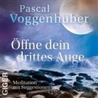 Pascal Voggenhuber, Pascal Voggenhuber - Öffne Dein Drittes Auge, Audio-CD (Hörbuch)