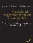Staf Callewaert, Karin Ann Petersen, Karin Anna Petersen - Praxeologisk sygeplejevidenskab - hvad er det?