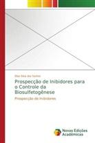 Elias Silva dos Santos - Prospecção de Inibidores para o Controle da Biosulfetogênese
