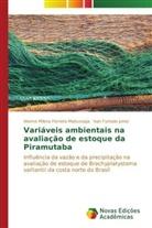 Akeme Milen Ferreira Matsunaga, Akeme Milena Ferreira Matsunaga, Ivan Furt Junior, Ivan Furtado Junior - Variáveis ambientais na avaliação de estoque da Piramutaba