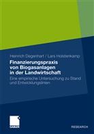 Heinric Degenhart, Heinrich Degenhart, Lars Holstenkamp - Finanzierungspraxis von Biogasanlagen in der Landwirtschaft