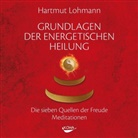 Hartmut Lohmann - Grundlagen der energetischen Heilung, 1 Audio-CD (Hörbuch)