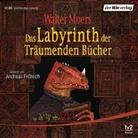 Walter Moers, Andreas Fröhlich - Das Labyrinth der Träumenden Bücher, 12 Audio-CDs (Hörbuch)