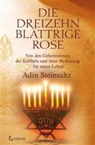 Adin Steinsaltz - Die dreizehnblättrige Rose