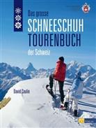 D. Coulin, David Coulin - Das große Schneeschuhtourenbuch der Schweiz