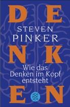 Steven Pinker - Wie das Denken im Kopf entsteht