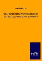 Carl Gottsche - Über Jurassische Versteinerungen aus der argentinischen Cordillere